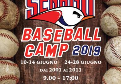 Camp estivo 2019